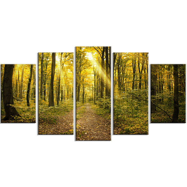 Designart Sunset in Green Autumn Forest Modern Forest Wrapped Art - 5 Panels