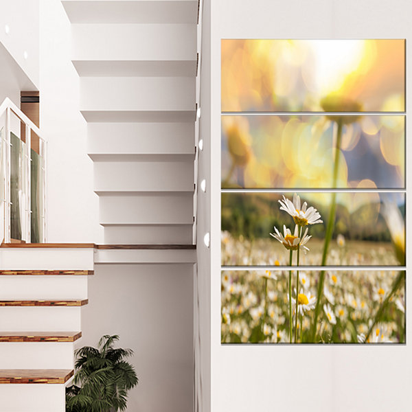 Designart Blooming Chamomiles Flowers Oversized Landscape Canvas Art - 4 Panels