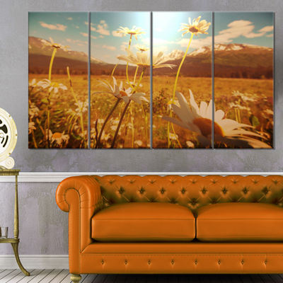 Designart Blooming Chamomiles in Meadow Large Flower CanvasWall Art - 4 Panels