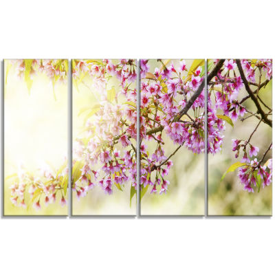 Designart Blooming Cherry Flowers Floral Photography Art - 4 Panels