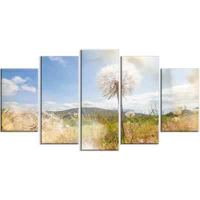 Designart Blooming Dandelion Under Bright Sky Floral Wrapped Canvas Art Print - 5 Panels