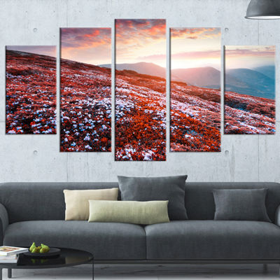 Designart Blooming Fields in Carpathian LandscapePhoto Wrapped Canvas Art Print - 5 Panels