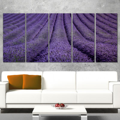 Designart Blooming Lavender Flower Texture Landscape Canvas Art Print - 5 Panels