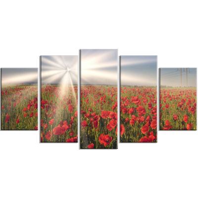 Designart Blooming Wild Poppies Under Sun FloralWrapped Canvas Art Print - 5 Panels