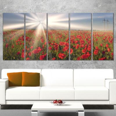 Designart Blooming Wild Poppies Under Sun FloralCanvas Art Print - 5 Panels