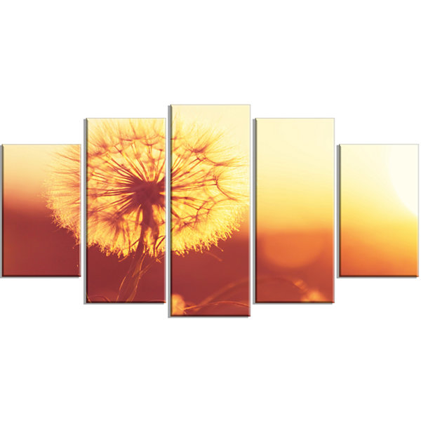 Designart Blossom Dandelion Flower On Brown LargeFlower Wrapped Canvas Art Print - 5 Panels