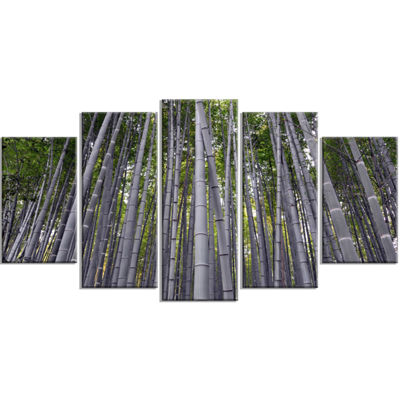 Designart Thick Bamboo Trunks in Japan Forest Wrapped Wall Art Print - 5 Panels