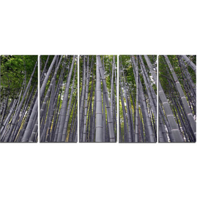Designart Thick Bamboo Trunks in Japan Forest Canvas Wall Art Print - 5 Panels
