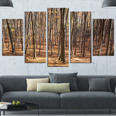 Designart Thick Carpathian Deciduous Forest ForestWrapped Art Print - 5 Panels