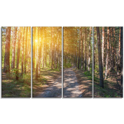 Designart Thick Forest with Yellow Sun Rays Landscape Photography Canvas Print - 4 Panels