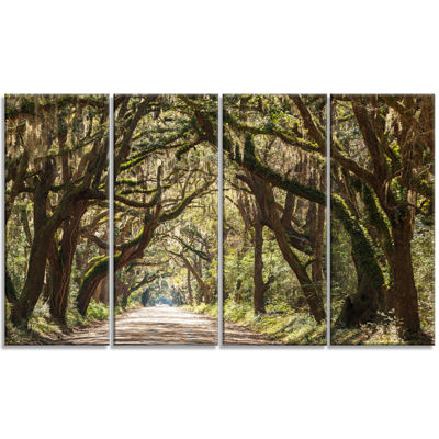 Designart Trees Tunnel in Botany Bay Landscape Wall Art on Canvas - 4 Panels