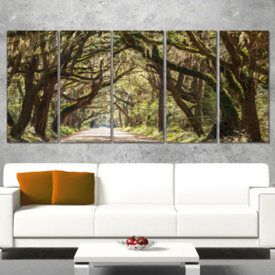 Designart Trees Tunnel in Botany Bay Landscape Wall Art on Wrapped - 5 Panels
