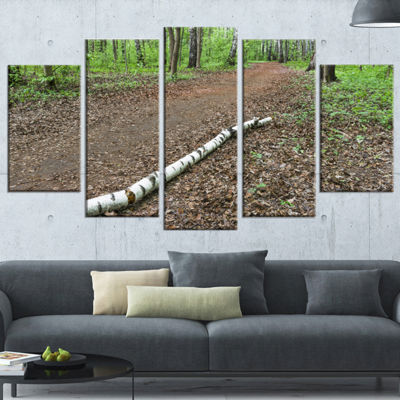 Designart Trunk of Birch on the Track ContemporaryLandscapeWrapped Art - 5 Panels