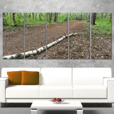 Designart Trunk of Birch on the Track ContemporaryLandscapeCanvas Art - 5 Panels