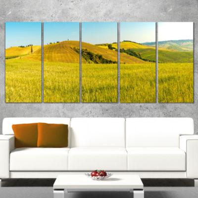Designart Tuscany Wheat Field on Sunny Day Landscape Print Wrapped Wall Artwork - 5 Panels