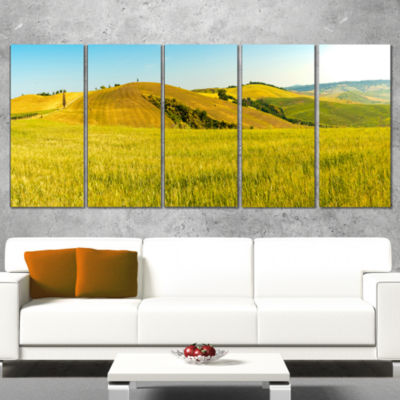 Designart Tuscany Wheat Field on Sunny Day Landscape Print Wall Artwork - 5 Panels