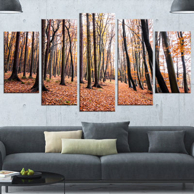Designart Bright Fall Forest with Clear Sky ModernForest Wrapped Canvas Art - 5 Panels