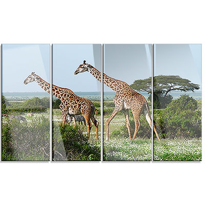 Designart Two Giraffes in African Savannah AfricanCanvas Art Print - 4 Panels