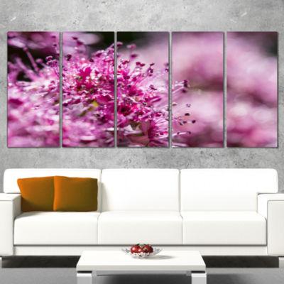 Designart Bright Pink Little Flowers Large FlowerWrapped Canvas Wall Art - 5 Panels