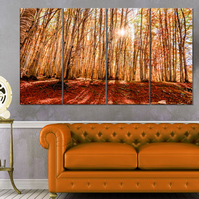 Designart Bright Sun Over Thick Fall Forest ModernForest Canvas Art - 4 Panels