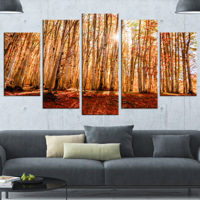 Designart Bright Sun Over Thick Fall Forest ModernForest Canvas Art - 5 Panels