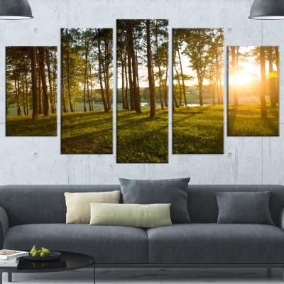 Designart Bright Sunlight in Dense Forest Large Landscape Wrapped Canvas Art - 5 Panels