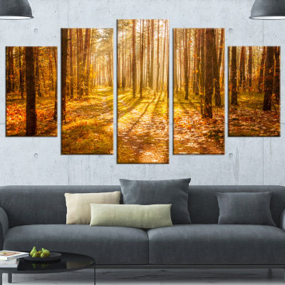 Designart Bright Sunlight in Yellow Fall Forest Modern Forest Wrapped Canvas Art - 5 Panels