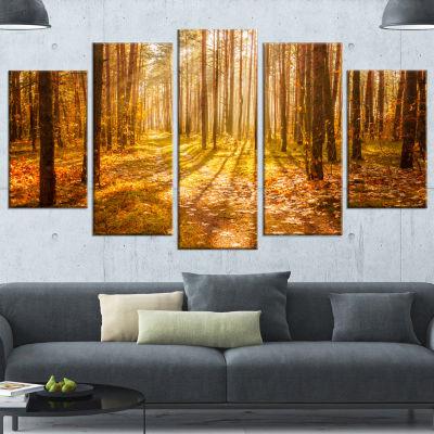 Designart Bright Sunlight in Yellow Fall Forest Modern Forest Canvas Art - 5 Panels