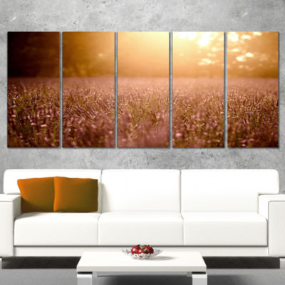 Designart Brown Tinged Lavender Field Sunset Floral Canvas Art Print - 4 Panels