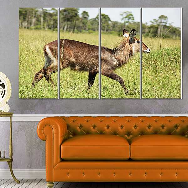 Designart Waterbuck Antelope in Green Grass ExtraLarge African Canvas Art Print - 4 Panels