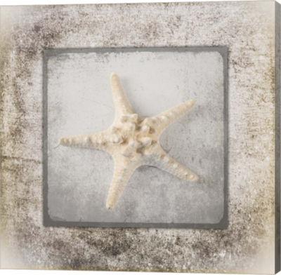 Metaverse Art Stone Star 2 Canvas Wall Art