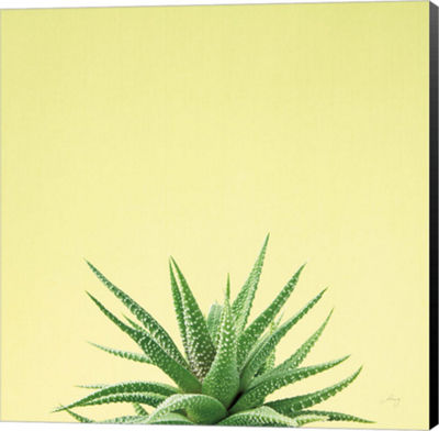 Metaverse Art Succulent Simplicity I Canvas Wall Art
