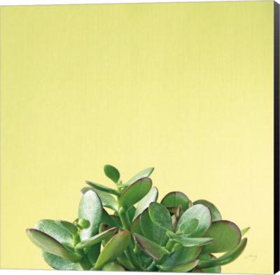 Metaverse Art Succulent Simplicity III Canvas WallArt