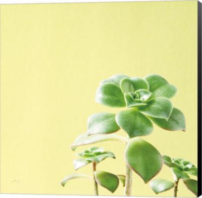 Metaverse Art Succulent Simplicity X Canvas Wall Art