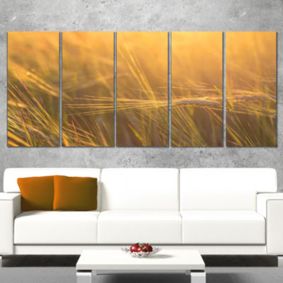 Wheat Field Close Up at Sunset Large Landscape Canvas Art - 5 Panels