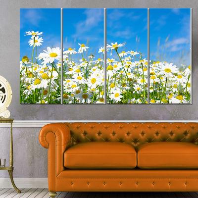 Designart White Daisies Under Bright Blue Sky Floral CanvasArt Print - 4 Panels