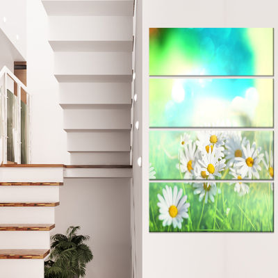 Chamomiles On Abstract Background Floral Canvas Art Print - 4 Panels