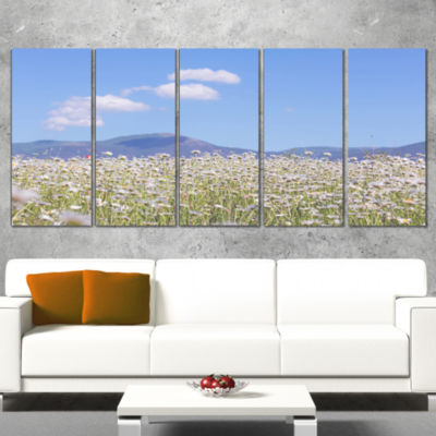 Designart Chamomiles with Hills On Background Large Flower Canvas Art Print - 5 Panels