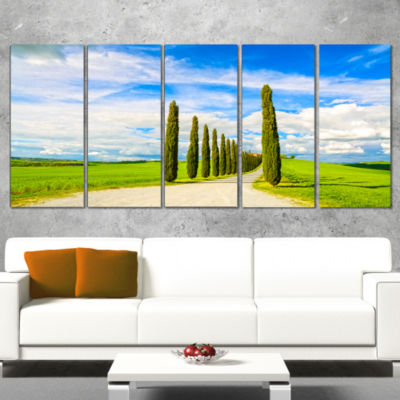 Designart White Road Through Cypress Trees Oversized Landscape Wrapped Wall Art Print - 5 Panels