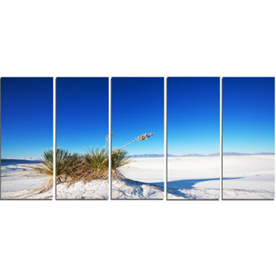 Designart White Sands Park in Usa Landscape CanvasArt Print- 5 Panels