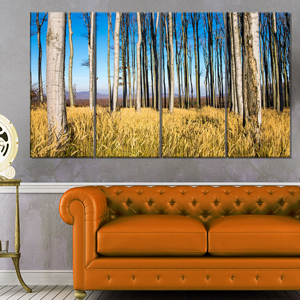 Designart Clear Sky and Bush in Thick Forest Modern Forest Canvas Art - 4 Panels