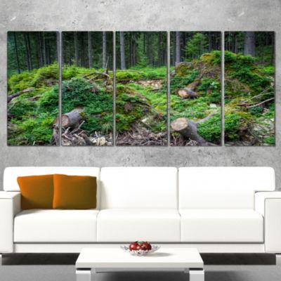 Designart Wild Deep Forest Rocks and Hills Landscape WrappedArt Print - 5 Panels