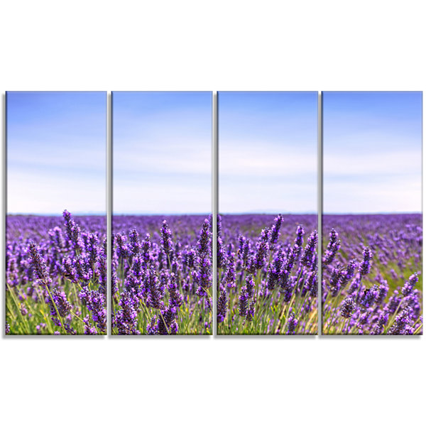 Close View of Lavender Flower Field Oversized Landscape Wall Art Print - 4 Panels