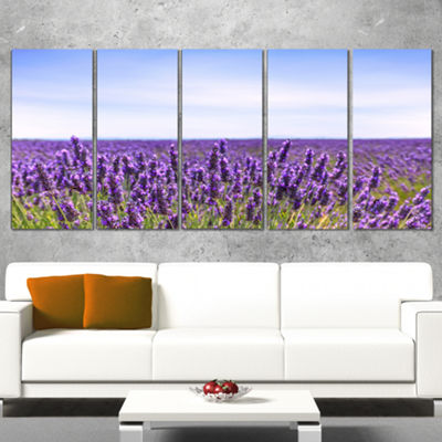 Designart Close View of Lavender Flower Field Oversized Landscape Wrapped Wall Art Print - 5 Panels