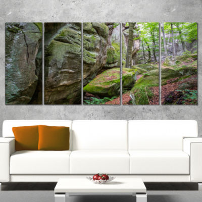 Designart Wild Deep Moss Forest Ukraine LandscapeWrapped Art Print - 5 Panels