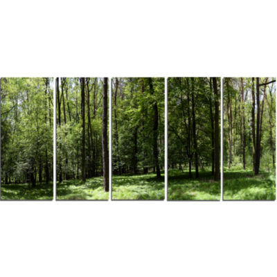 Wild Green Forest Panorama Oversized Forest CanvasArtwork - 5 Panels