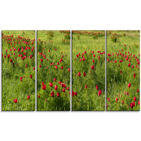 Designart Wild Peonies Flower in Steppe Modern Landscape Wall Art Canvas - 4 Panels