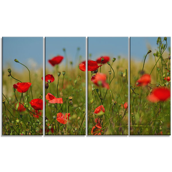 Wild Poppy Flowers in Green Garden Floral Canvas Art Print - 4 Panels