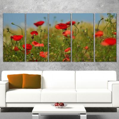Designart Wild Poppy Flowers in Green Garden Floral WrappedArt Print - 5 Panels