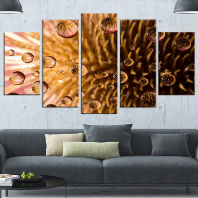 Colorful Brown Flower in Raindrops Large Floral Canvas Artwork - 5 Panels